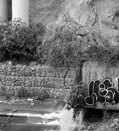 Dead Stream 2