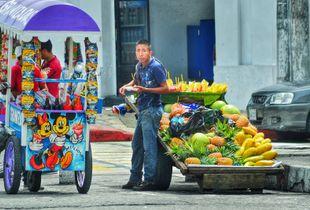 El frutero del callejon