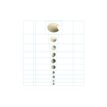 Eggshells in Descending Order