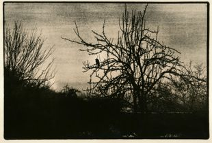 """From the series """"The last song"""", 02"""