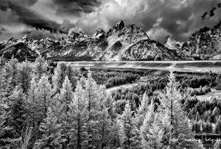 Grand Teton & Snake River