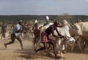 3. The riot of God during the seizure of oxen required for the ceremony.