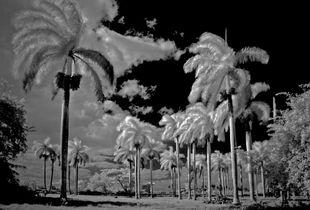 Santa Lucia Cuba 2012