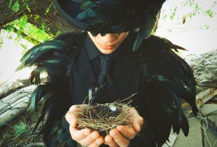 Raven Reflections