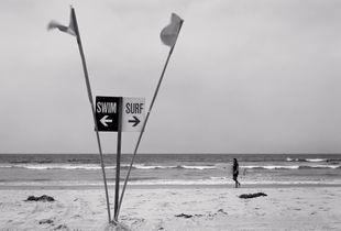 Swim/Surf