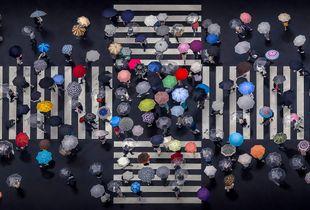 Umbrellas-Crossing