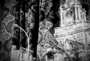 Through a Lace Curtain