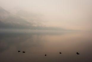 Mist You(2)
