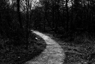 On The Heath (i)