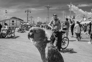 Coney Island, NY, 2019