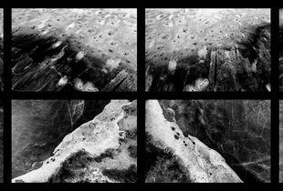 Lakeshore Operations | Dark Series #03