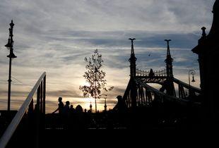 Liberty Bridge (Szabadsag hid) and the Duna Corso (Hungary-Budapest) in Sunset