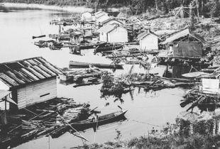 Life On The Lake: Danau Sentarum, Kalimantan Borneo.