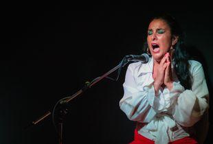 Baile, Cante and Palmas: Flamenco Emotionally Intense