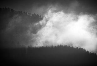 Foggy morning light
