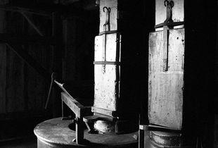 Antique Apple Press