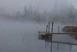 Morning Fog 8403