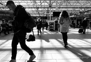 Coming and going in Waverley Station