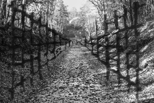 Guilty Landscape - Armando's art integrated with concentration Camp Amersfoort