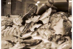 Sicily fisherman 1