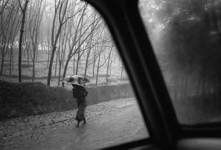 Woman walks by during torrential monsoon rains in Kerala, India