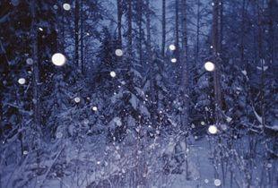 Winterstanders 01