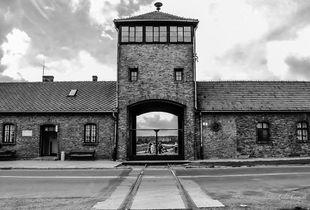 """Senza Ritorno"" [Auschwitz II - Birkenau]"