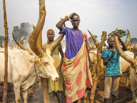 Cattle Boys of South Sudan