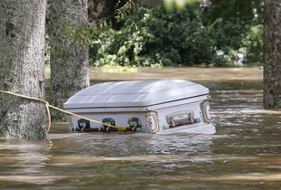Louisiana Underwater
