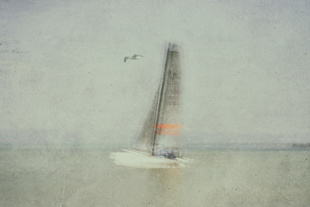 'painterly.sailing.experience', 2015