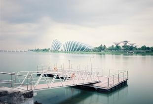 Gardens By The Bay No. 1