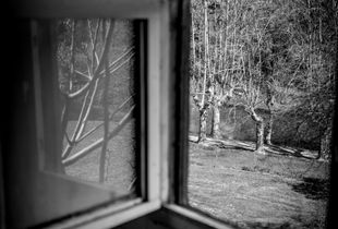 housebound. ongoing. here, for a split second, i had the memory of looking out a similar country house window as a boy, down towards my family gathered on the lawn.