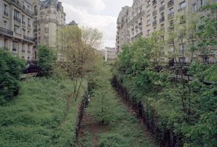 XVI arrondissement 113a