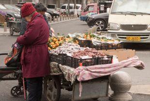 Chinese Fruit Seller