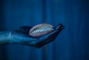 BLUE HAND   Akebi