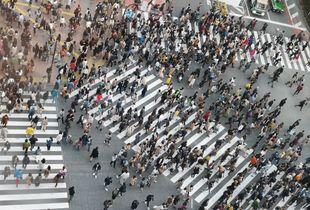 Tokyo Crosshead