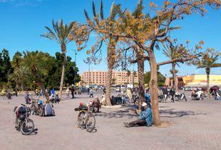 Siesta in Marrakesh