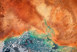 Rust Series #1055