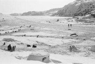Terre Inuit