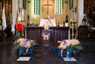 Celebration of Saint Anthony, Ingooigem © Nick Hannes
