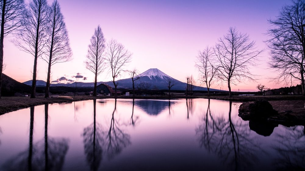 Sleeping Giants, Weeping Plums: Japanese Landscape Photography - Photographs and text by Hidenobu Suzuki | LensCulture