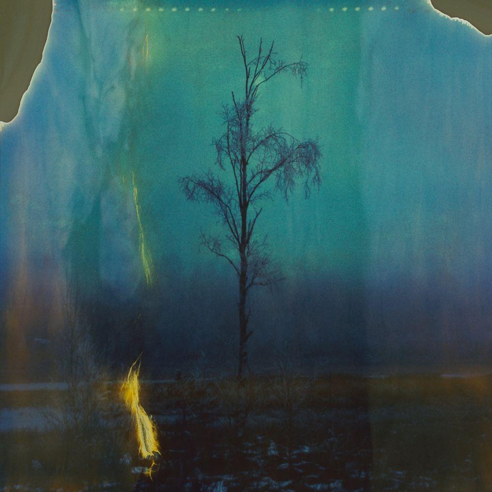 Dan Isaac Wallin - SX-70 mixed   LensCulture