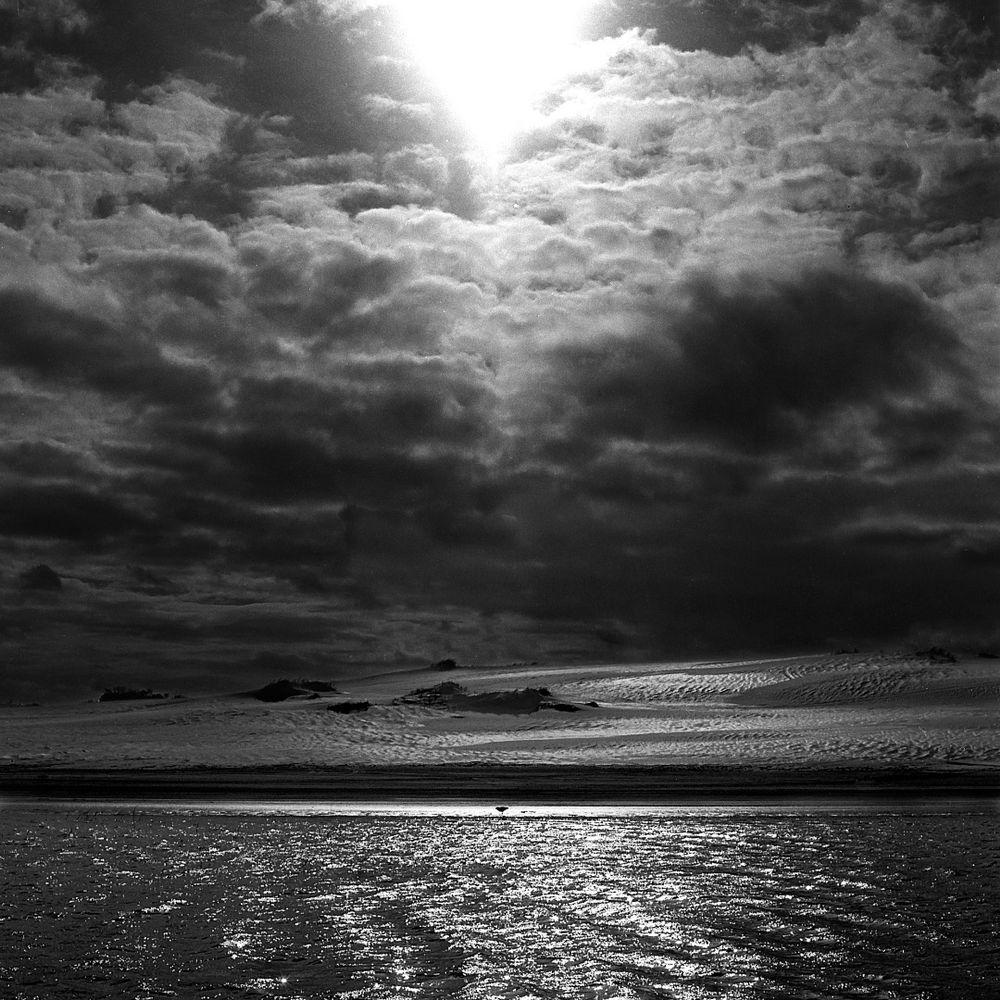 Diego Melfi - Black Nature | LensCulture