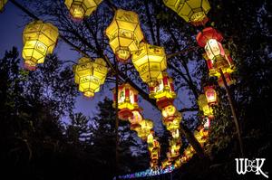 China Lights 2016