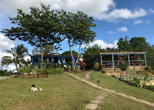 Organic Farm and Restaurant, Vinales