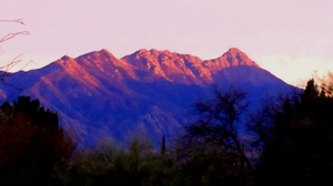 Sunset Grand