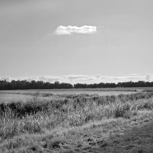Cloud and Field, Duncan, MS 2009