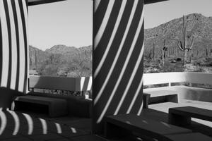 Desert Windows