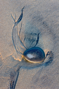 Of Sand, Sea and Rock 01