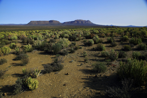 Open land / Wide spaces of the Great Karoo, Winter 2015